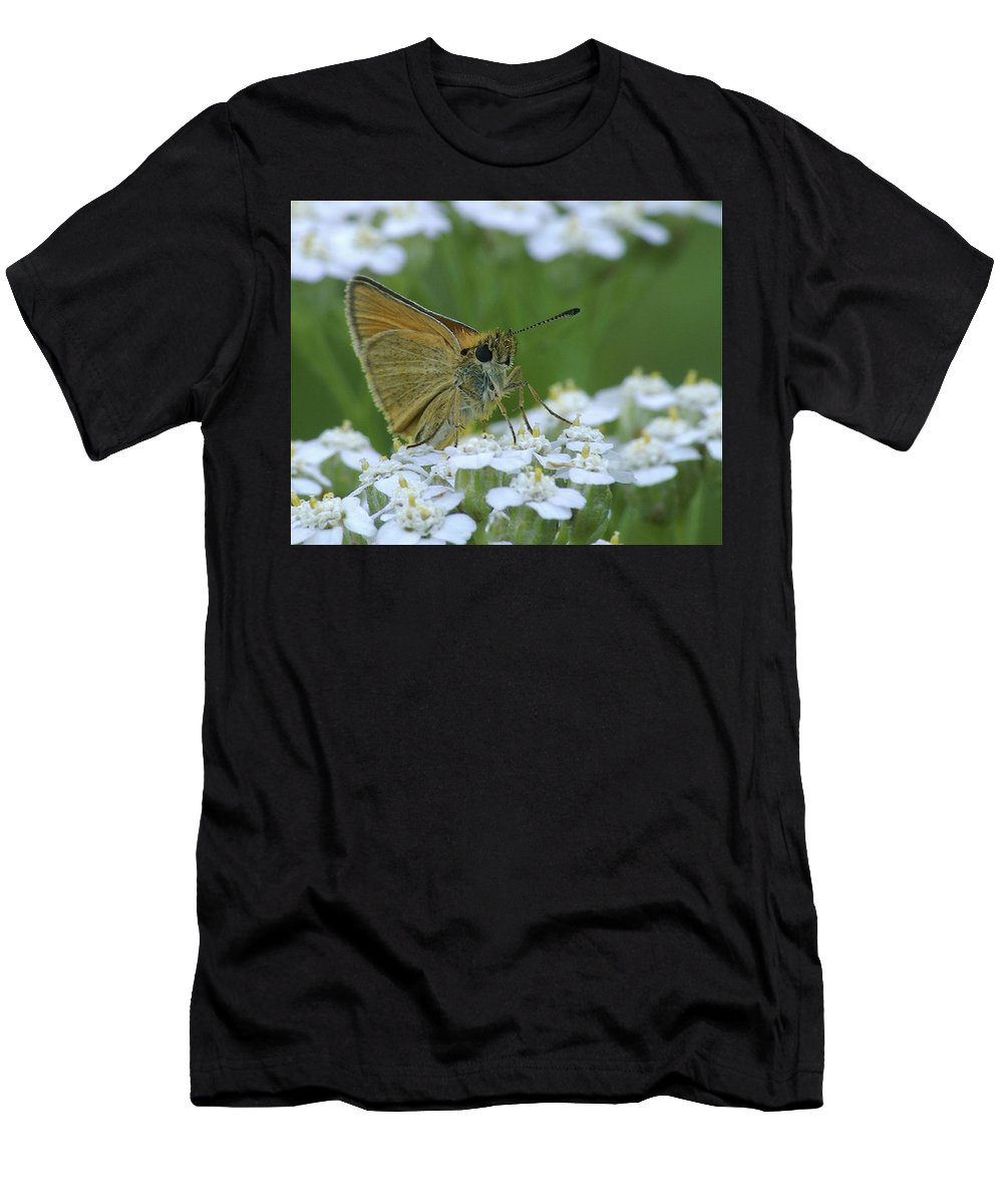 White Flowers Men's T-Shirt (Athletic Fit) featuring the photograph Dion Skipper Yarrow Blossoms by Michael Peychich
