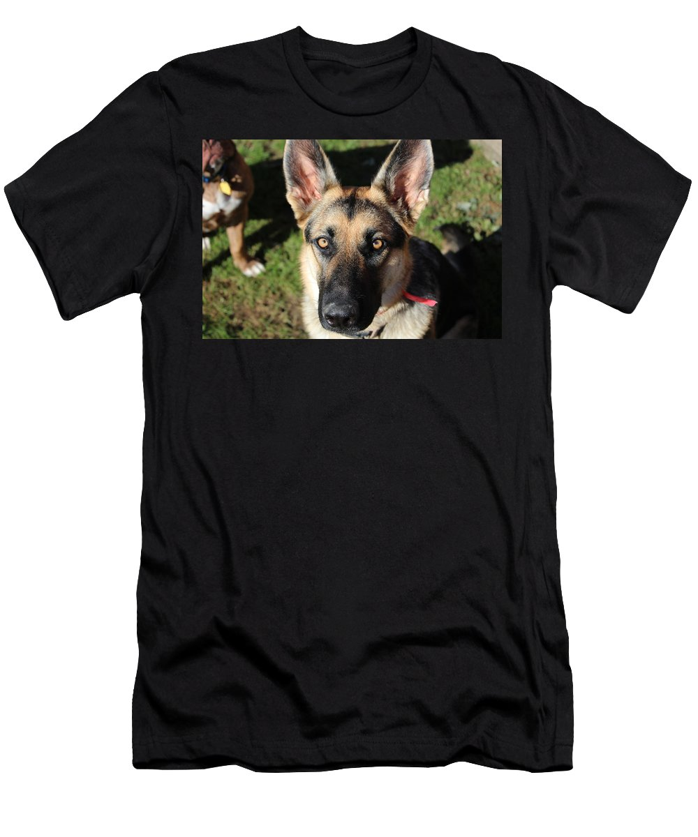 Beautiful Dog Men's T-Shirt (Athletic Fit) featuring the photograph DOG by Nita Strawn