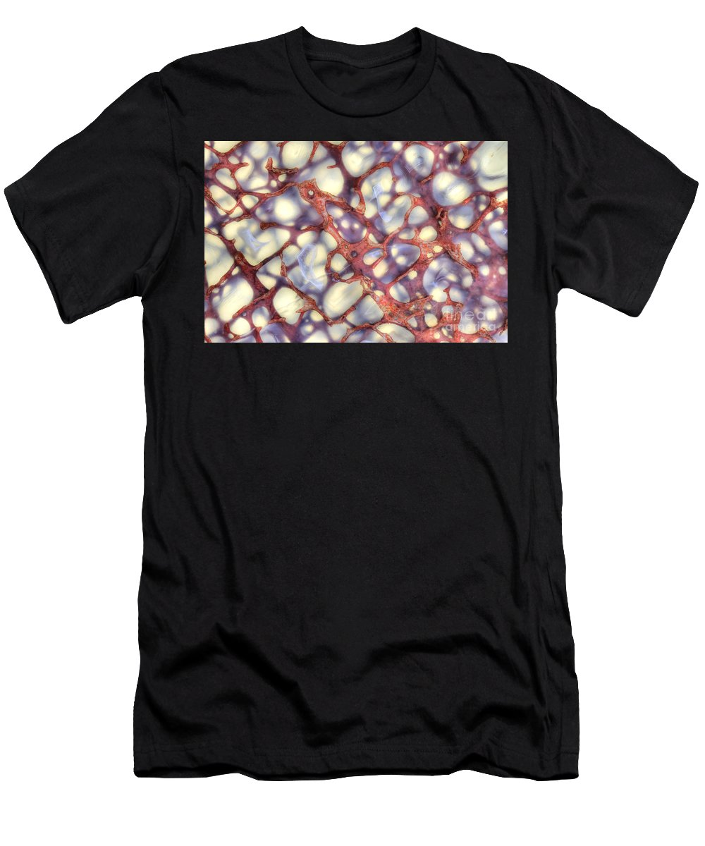 Dinosaur Men's T-Shirt (Athletic Fit) featuring the photograph Fossilized Dinosaur Bone by Ted Kinsman