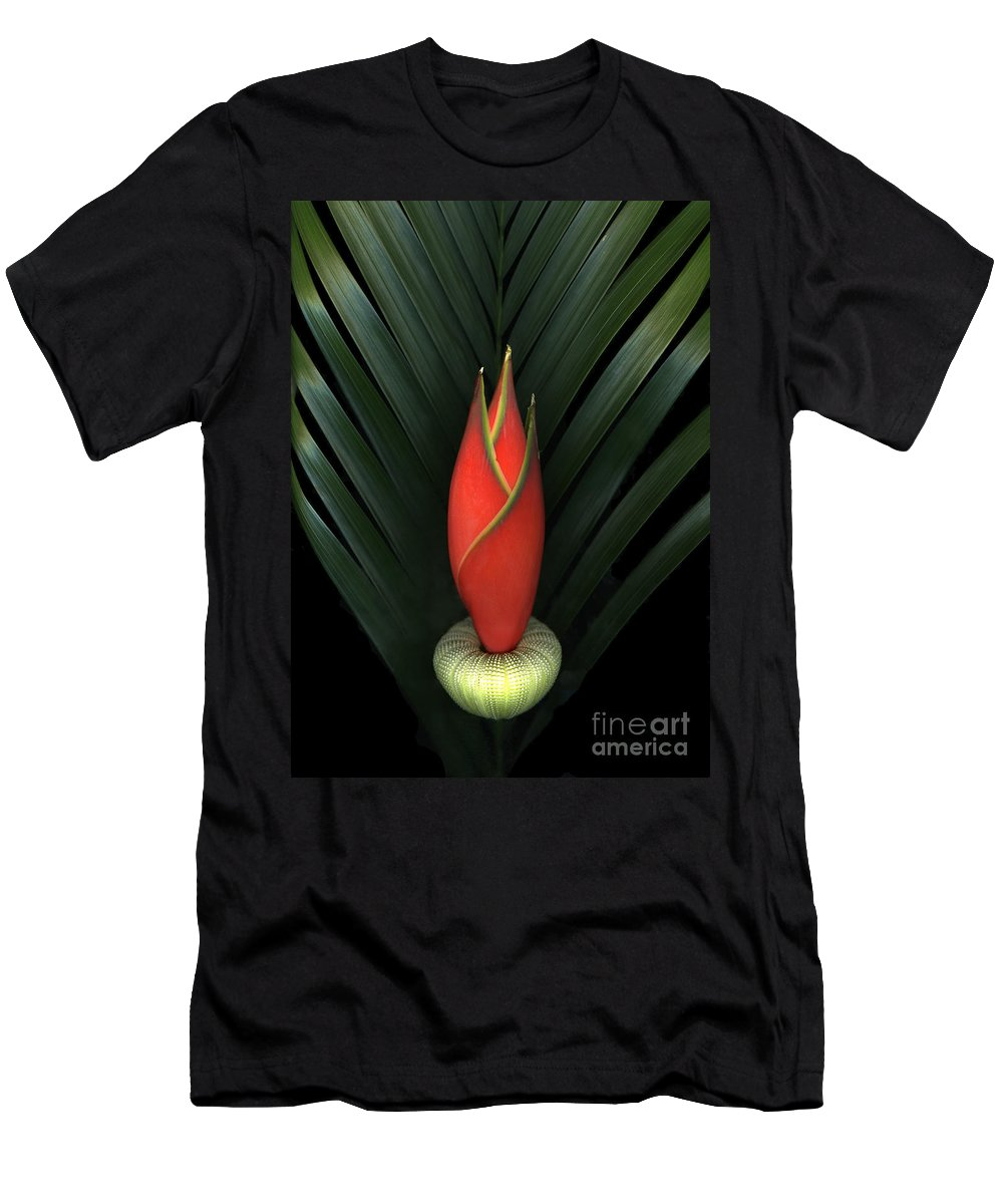 Scanart Men's T-Shirt (Athletic Fit) featuring the photograph Palm Of Fire by Christian Slanec