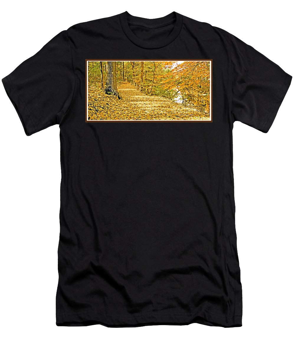 Dappled Men's T-Shirt (Athletic Fit) featuring the photograph Path Through A Pennsylvania Deciduous Forest Autumn by A Gurmankin