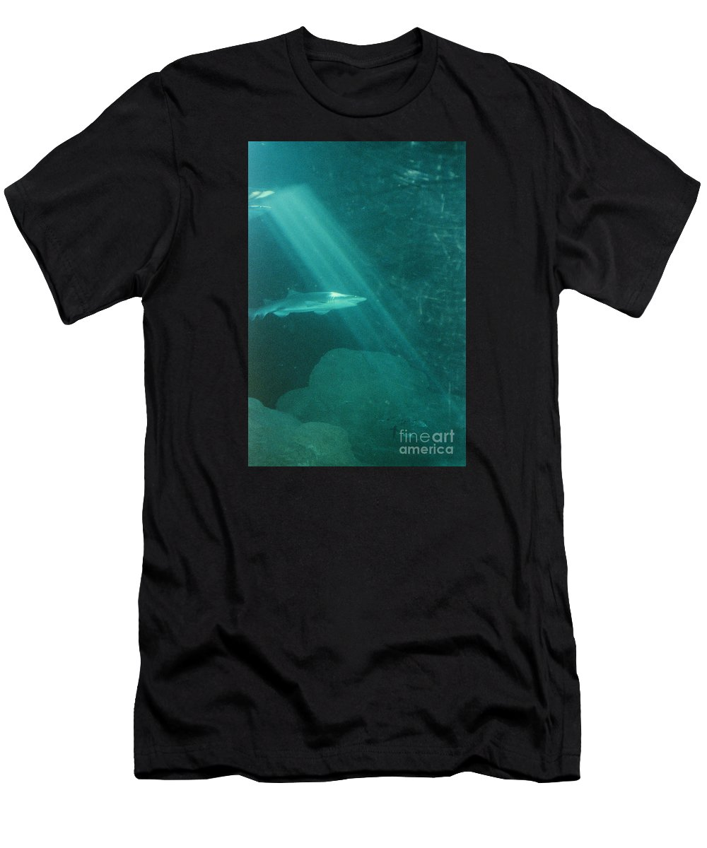 Sharks Men's T-Shirt (Athletic Fit) featuring the photograph Close Encounters by Jeffery L Bowers