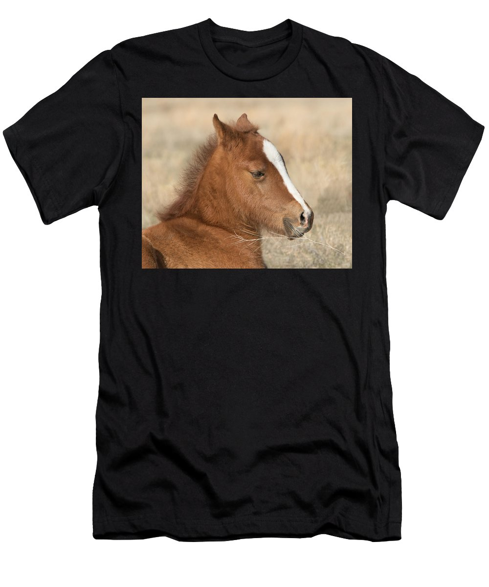 Horse Men's T-Shirt (Athletic Fit) featuring the photograph Valentino by Kent Keller