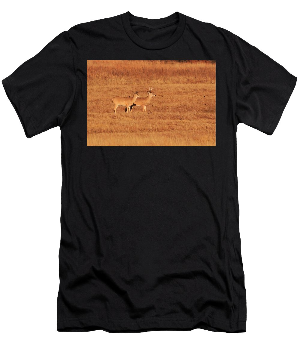 4. Where Men's T-Shirt (Athletic Fit) featuring the photograph White Tailed Deer by The Bohemian Lens LLC