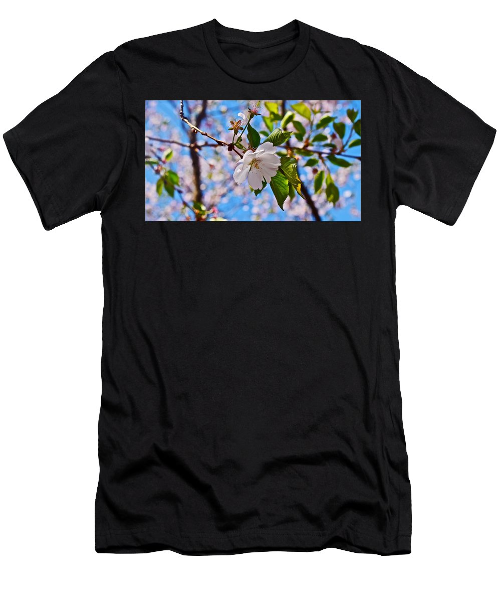 Cherry Blossoms Men's T-Shirt (Athletic Fit) featuring the photograph 2016 Olbrich Cherry Blossoms 2 by Janis Nussbaum Senungetuk