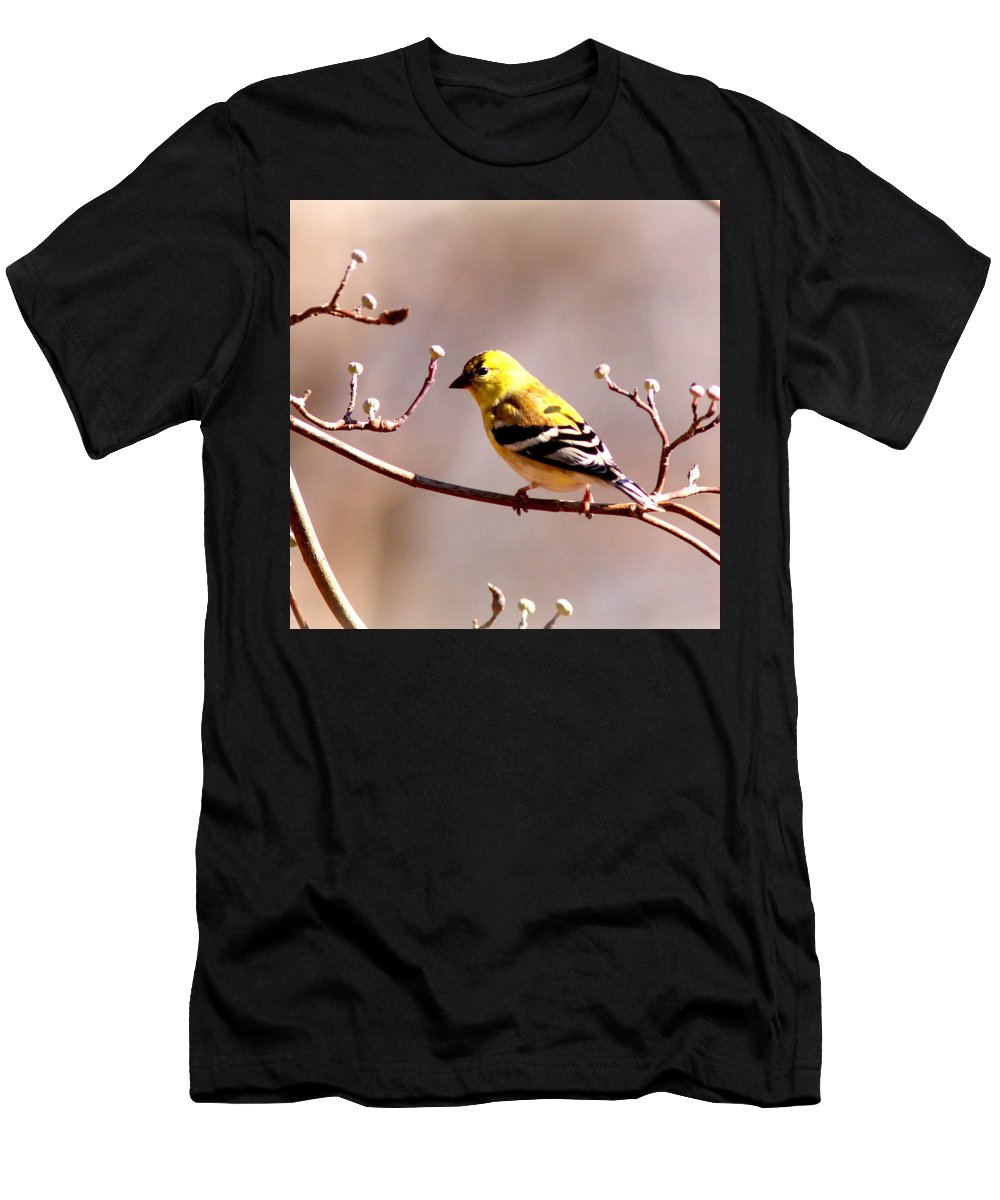 Goldfinch Men's T-Shirt (Athletic Fit) featuring the photograph 2164 - Goldfinch by Travis Truelove