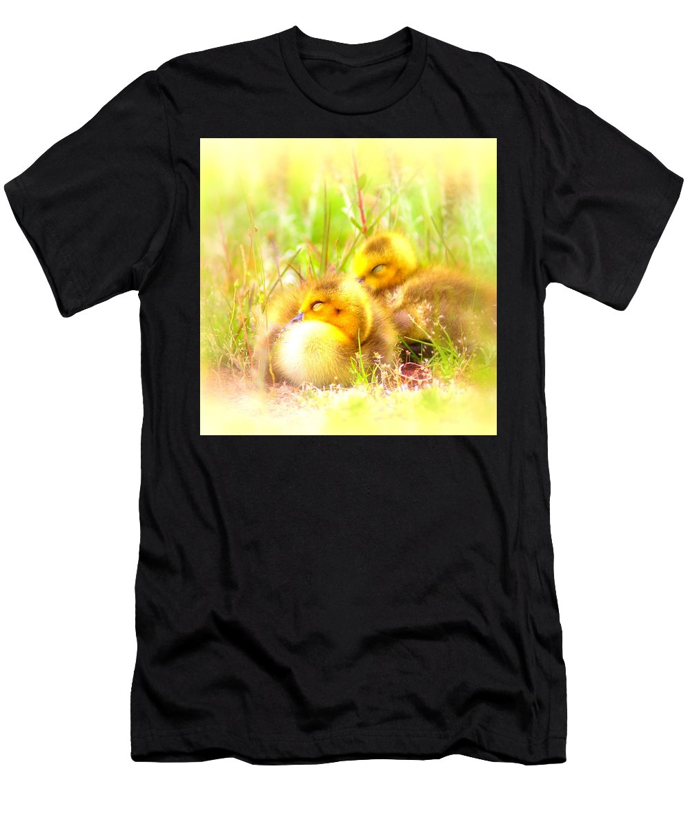 Canada Goose Men's T-Shirt (Athletic Fit) featuring the photograph 2736 - Canada Goose by Travis Truelove