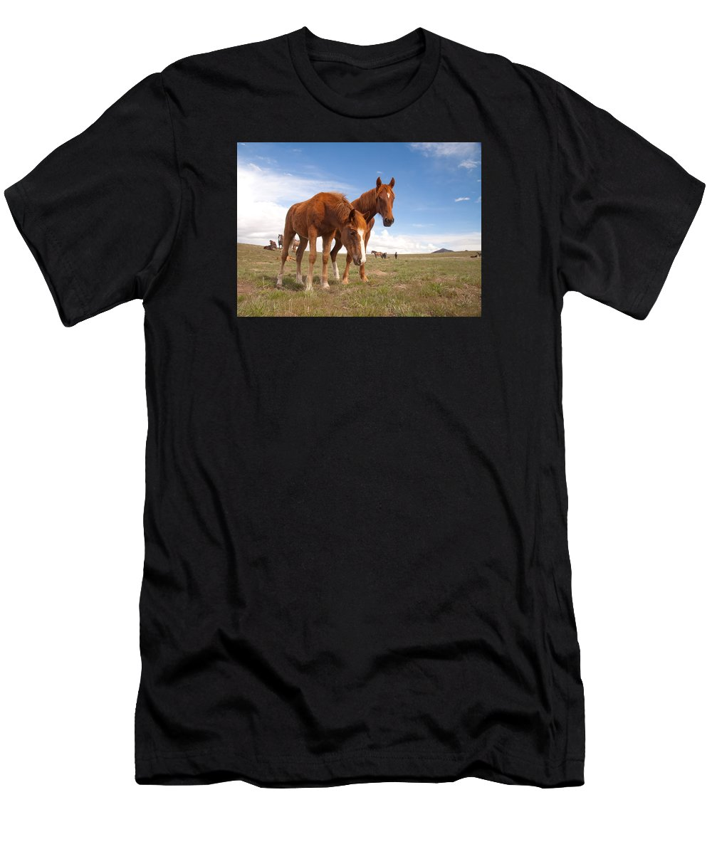 Wild Horse Men's T-Shirt (Athletic Fit) featuring the photograph Arrowhead by Kent Keller