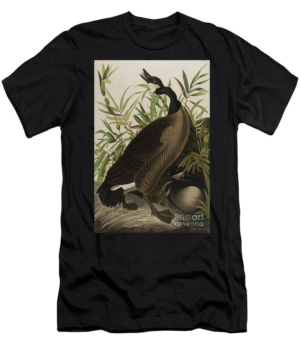 canada goose t shirt sale