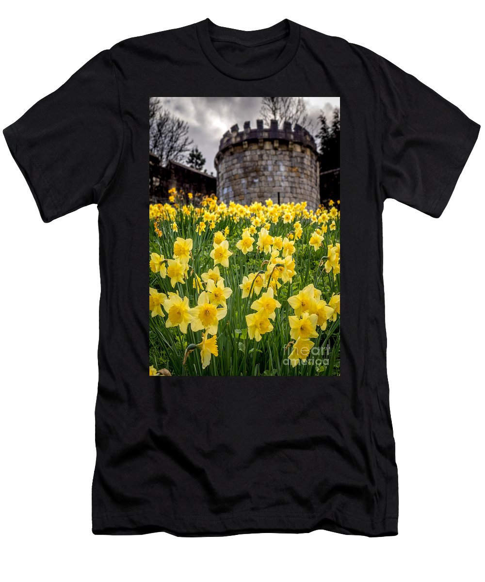 Great Britan Men's T-Shirt (Athletic Fit) featuring the photograph Daffodils And Bar Walls, York, Uk. by Bailey Cooper Photography
