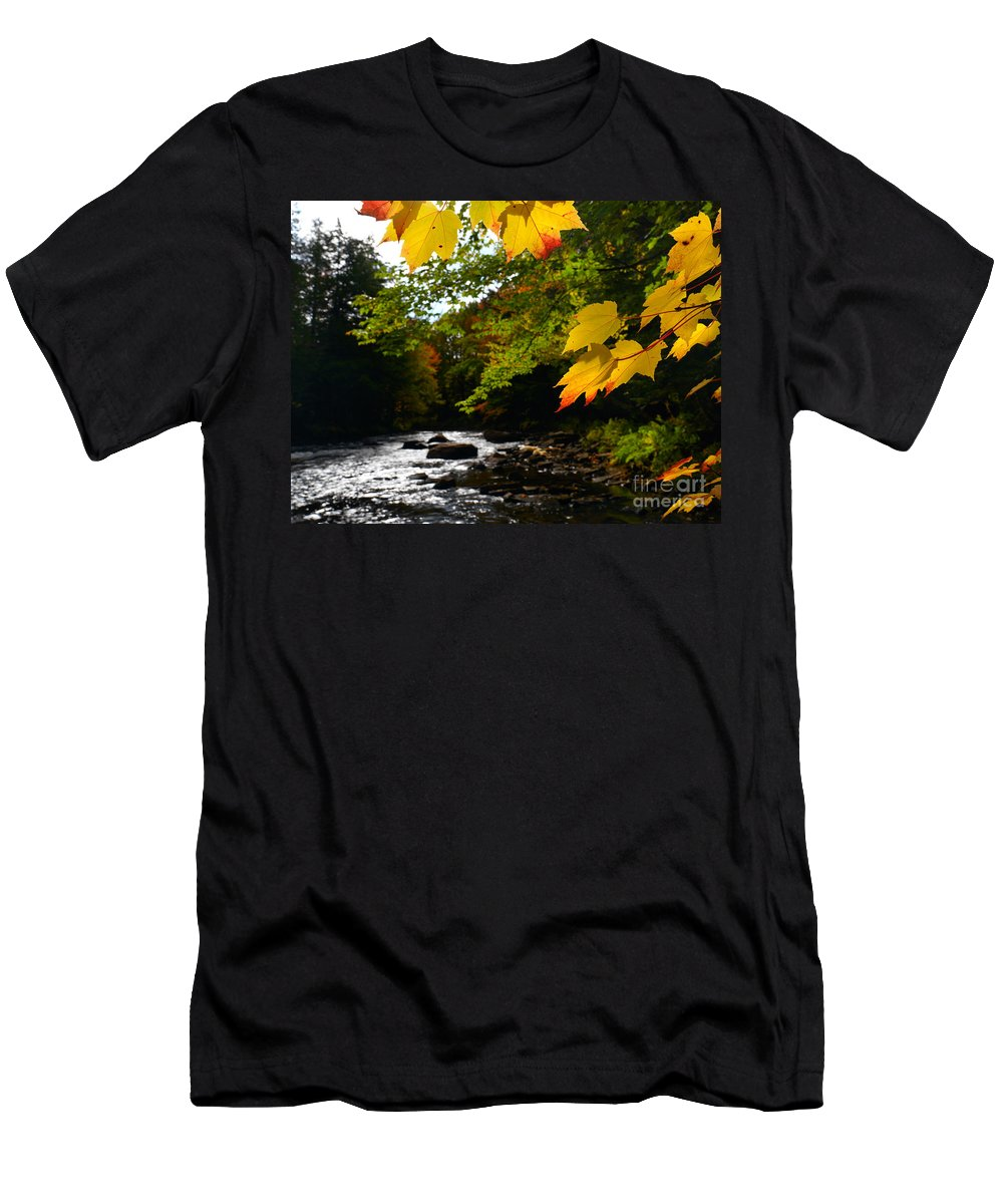 Autumn Men's T-Shirt (Athletic Fit) featuring the photograph Ontario Autumn Scenery by Oleksiy Maksymenko