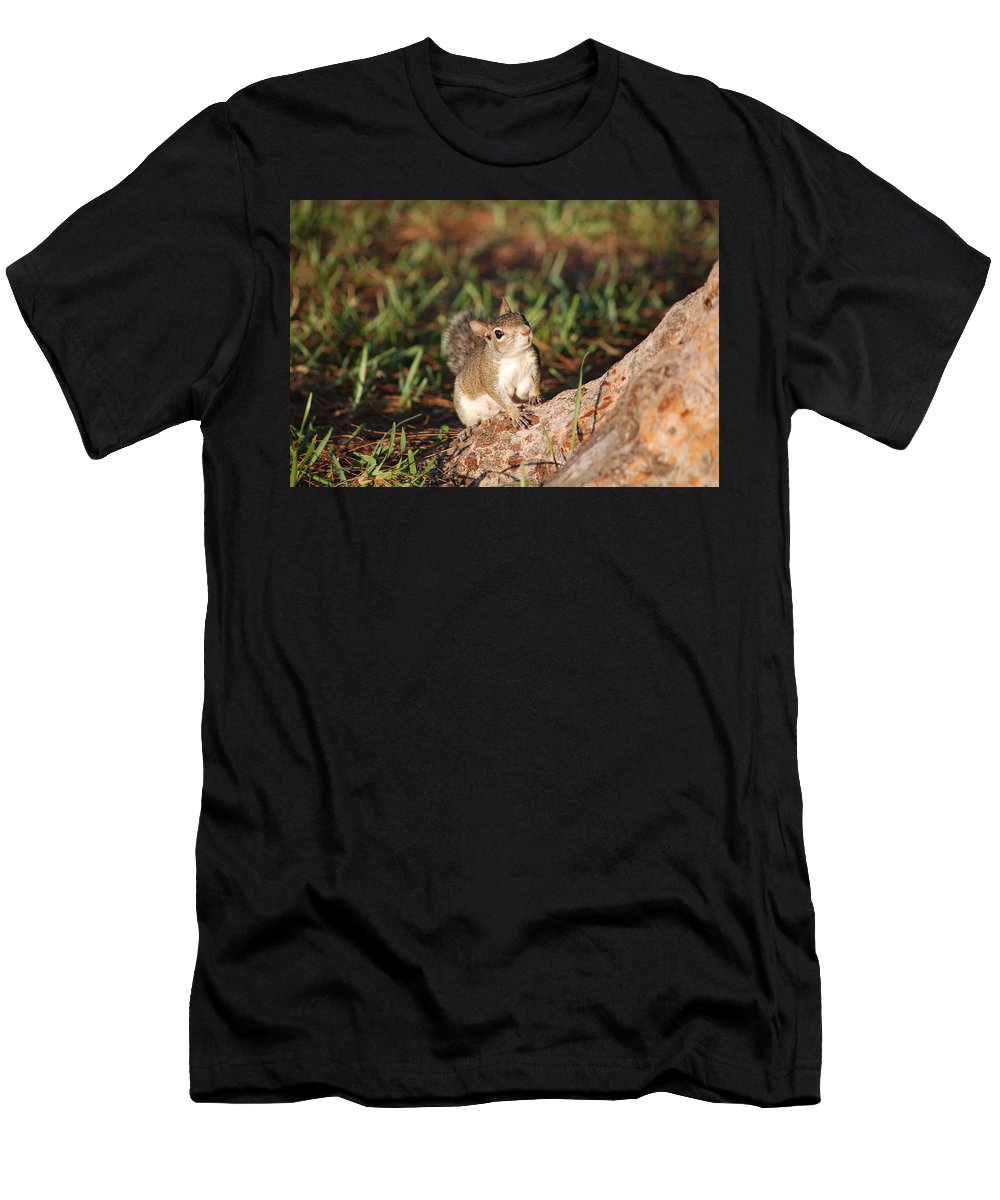 Squirell Men's T-Shirt (Athletic Fit) featuring the photograph 3- Squirrel by Joseph Keane