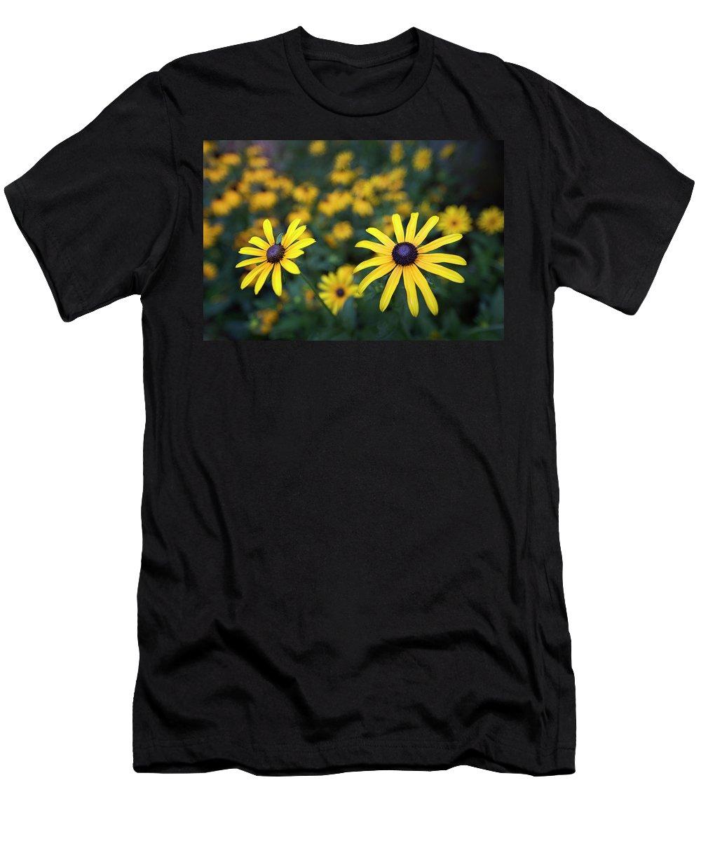 Black-eyed Susan Men's T-Shirt (Athletic Fit) featuring the photograph Summer Garden by Robert Fawcett