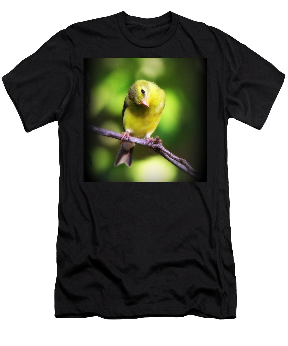 Goldfinch Men's T-Shirt (Athletic Fit) featuring the photograph 3008 - Goldfinch by Travis Truelove