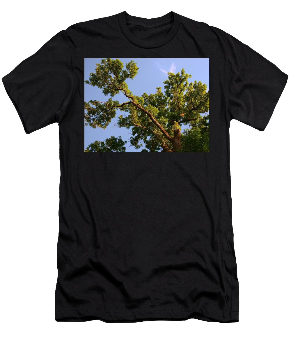 Photography Forest Scene Men's T-Shirt (Athletic Fit) featuring the digital art 3256 Photography Forest Scene by Rose Lynn
