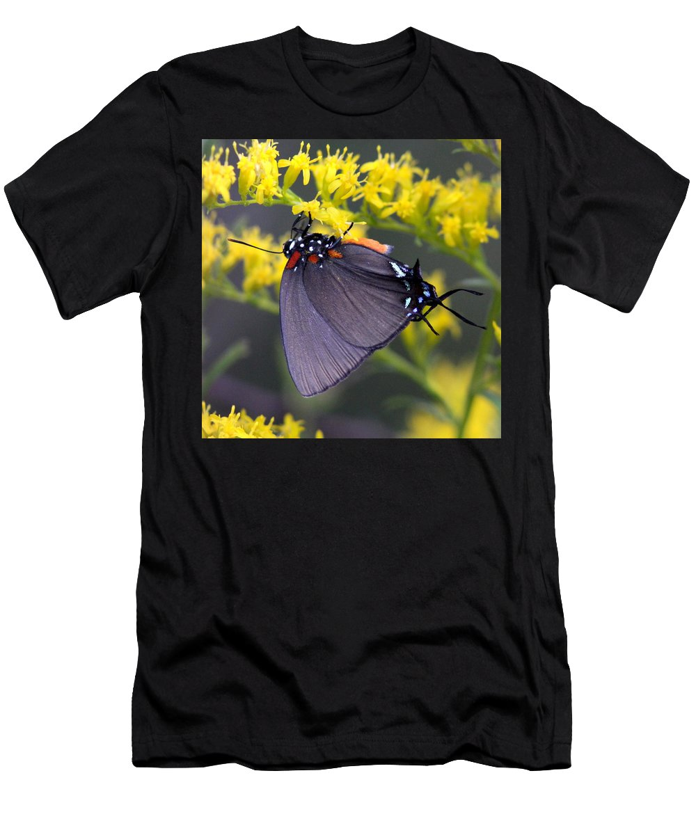 Butterfly Men's T-Shirt (Athletic Fit) featuring the photograph 3398 - Butterfly by Travis Truelove