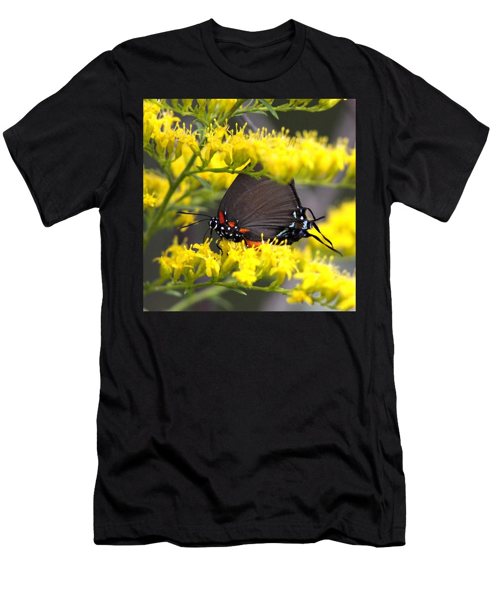 Butterfly Men's T-Shirt (Athletic Fit) featuring the photograph 3454 - Butterfly by Travis Truelove