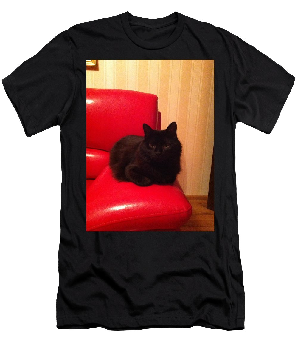 Men's T-Shirt (Athletic Fit) featuring the photograph Black Cat by Daniela Buciu