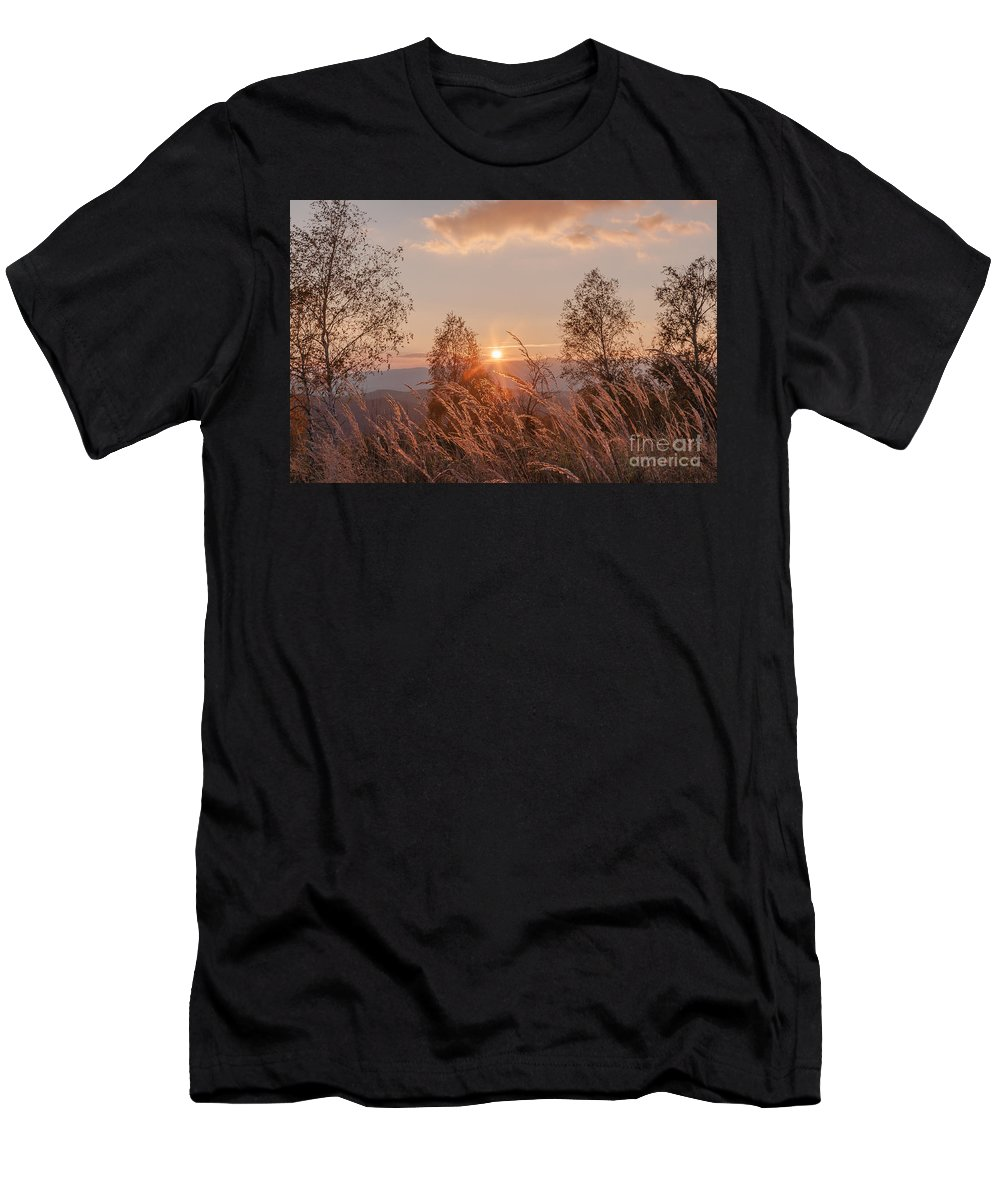 Carpathian Men's T-Shirt (Athletic Fit) featuring the photograph Sunny Transcarpathia by Lyudmila Prokopenko