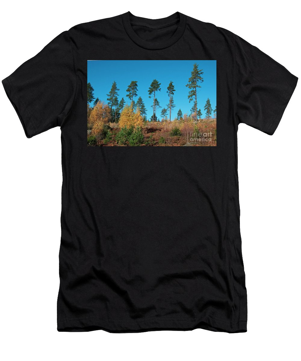 Trees Men's T-Shirt (Athletic Fit) featuring the photograph Autumn by Esko Lindell