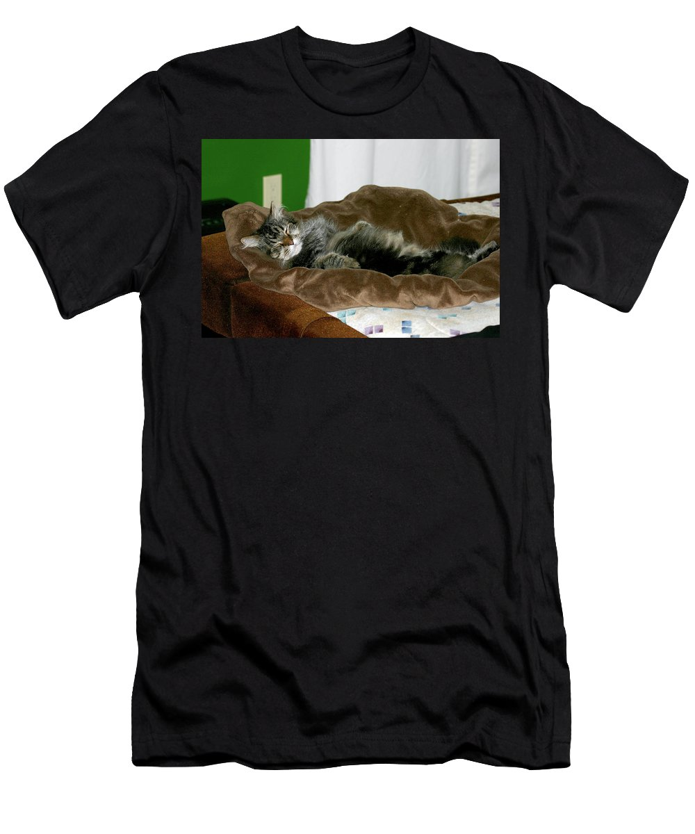 Maine Coon Men's T-Shirt (Athletic Fit) featuring the photograph Maine Coon Cat by Michael Munster