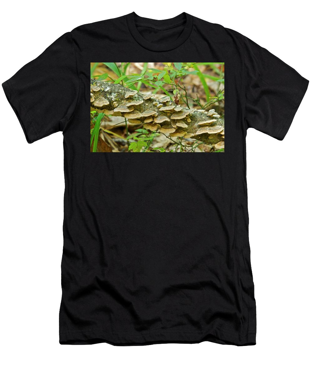 Polypores Men's T-Shirt (Athletic Fit) featuring the photograph Polypores 9155 by Michael Peychich