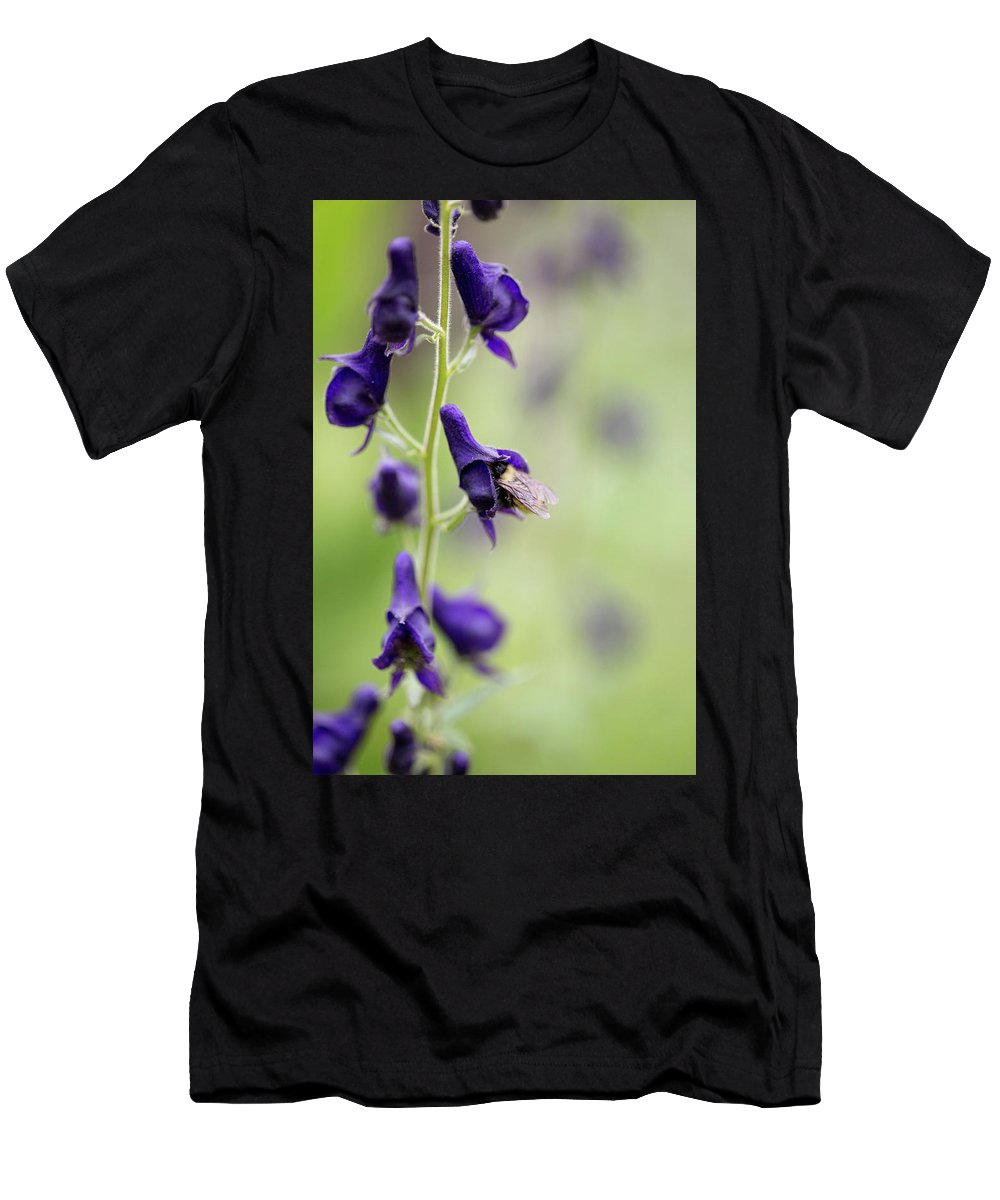 Crested Butte Men's T-Shirt (Athletic Fit) featuring the photograph A Bee In Your Monkhood? by Meagan Watson
