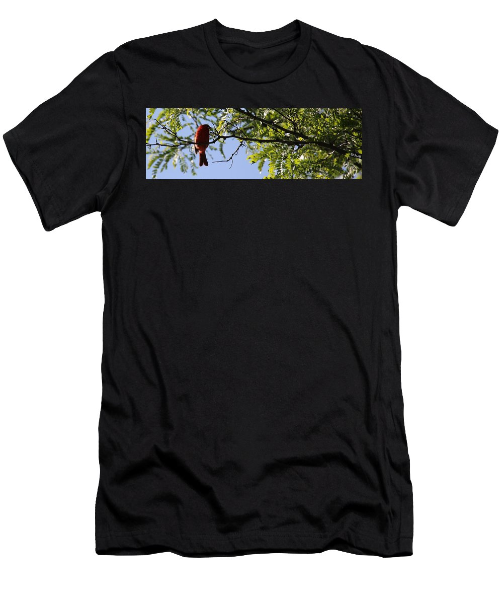 A Card In All Zen Men's T-Shirt (Athletic Fit) featuring the photograph A Card In All Zen by Ed Smith