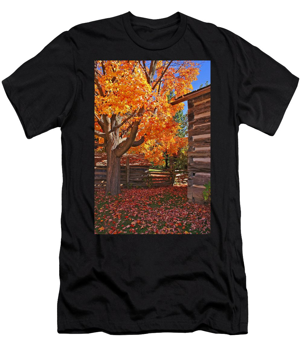 Fall Men's T-Shirt (Athletic Fit) featuring the photograph A Fall Day by One Peace Images