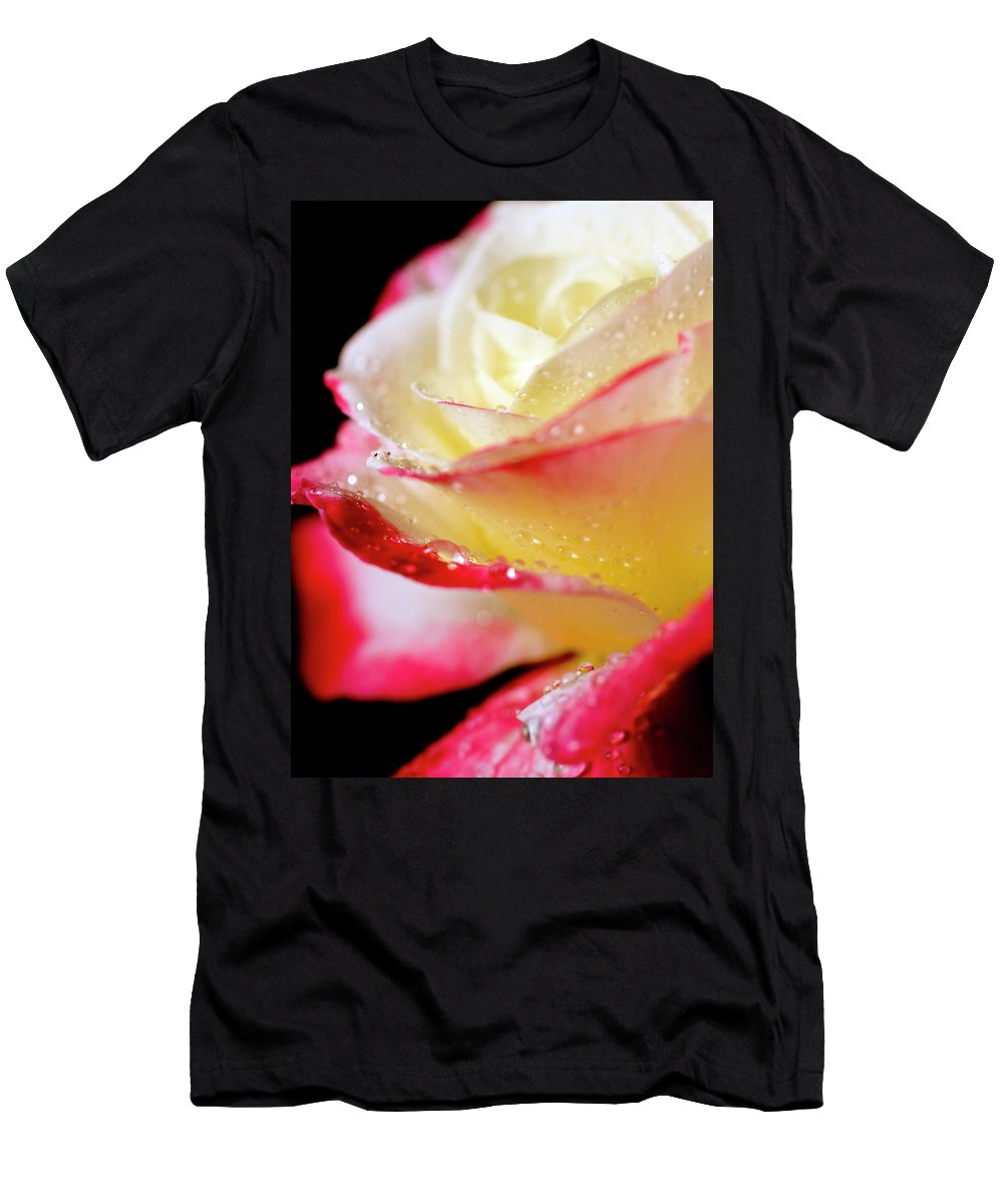 Rose Men's T-Shirt (Athletic Fit) featuring the photograph A Kiss Of Dew by Sheila Latta