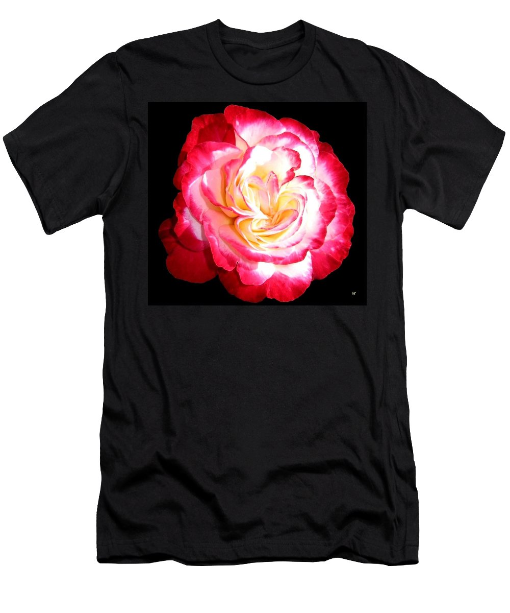 Rose Men's T-Shirt (Athletic Fit) featuring the photograph A Magnificent Rose by Will Borden