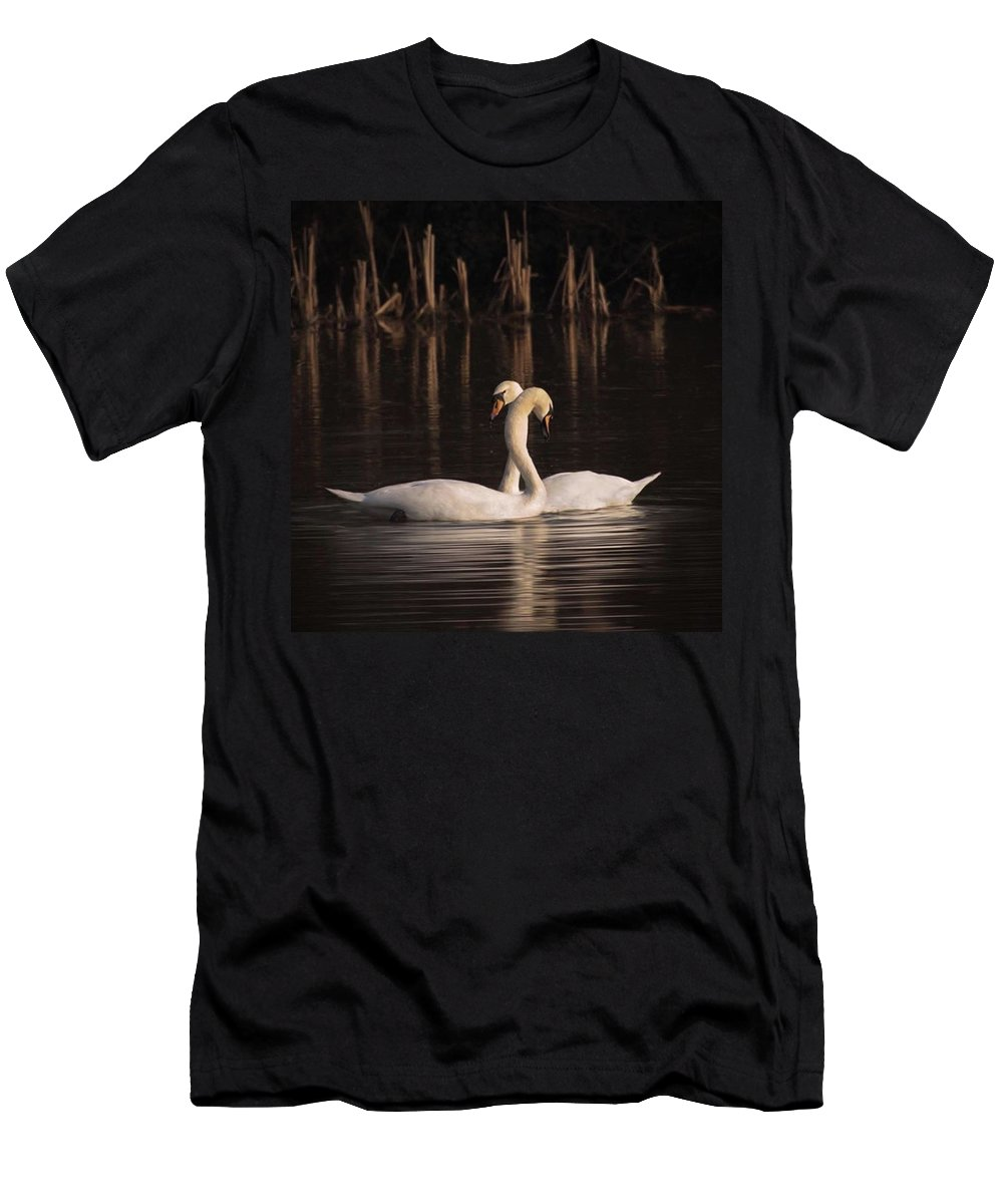 Nuts_about_birds T-Shirt featuring the photograph A Painting Of A Pair Of Mute Swans by John Edwards