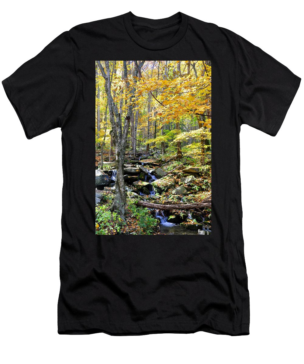 Smokey Mountain Men's T-Shirt (Athletic Fit) featuring the photograph A Smokey Mountain Stream by Brittany Horton
