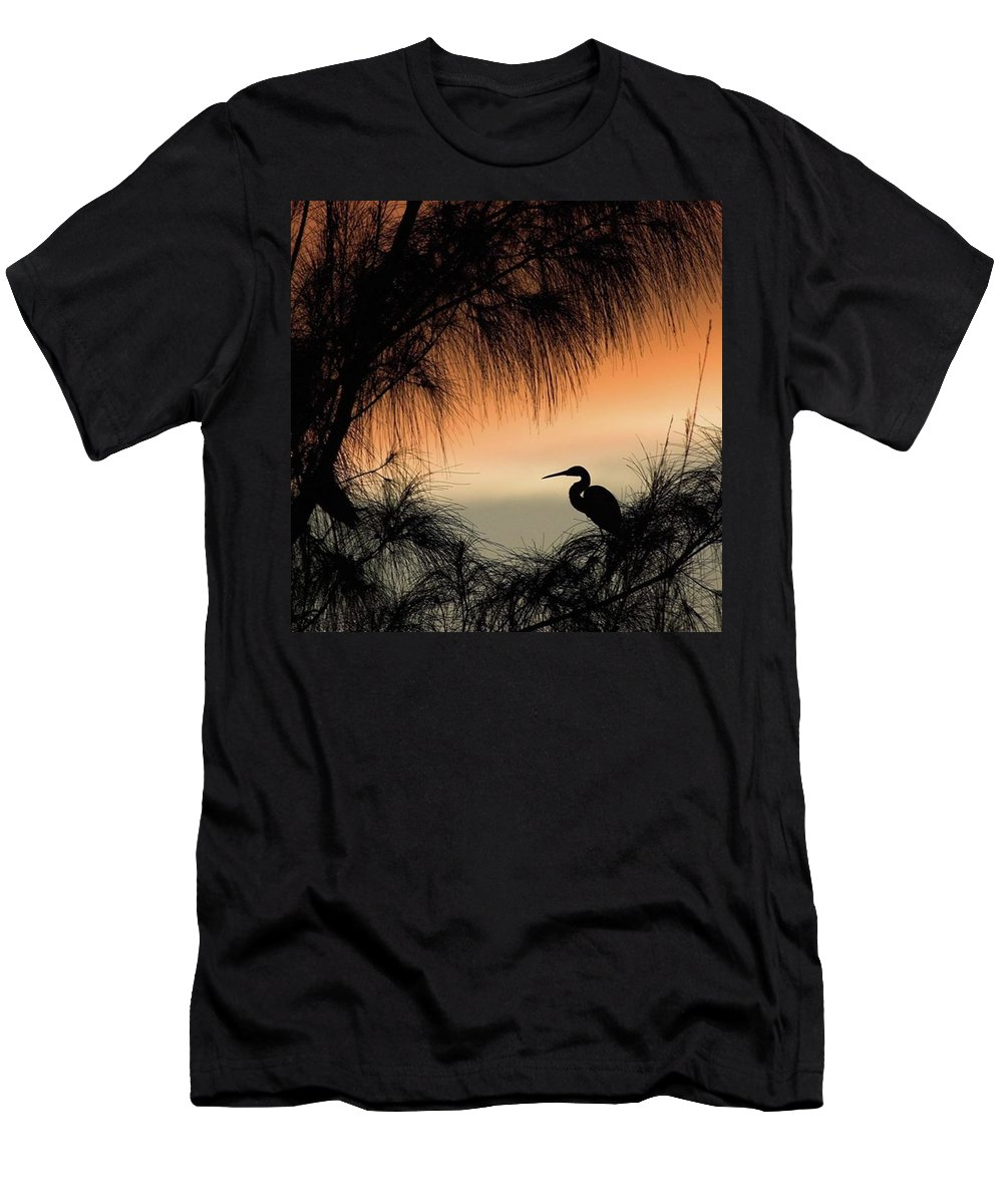 Egret T-Shirt featuring the photograph A Snowy Egret (egretta Thula) Settling by John Edwards