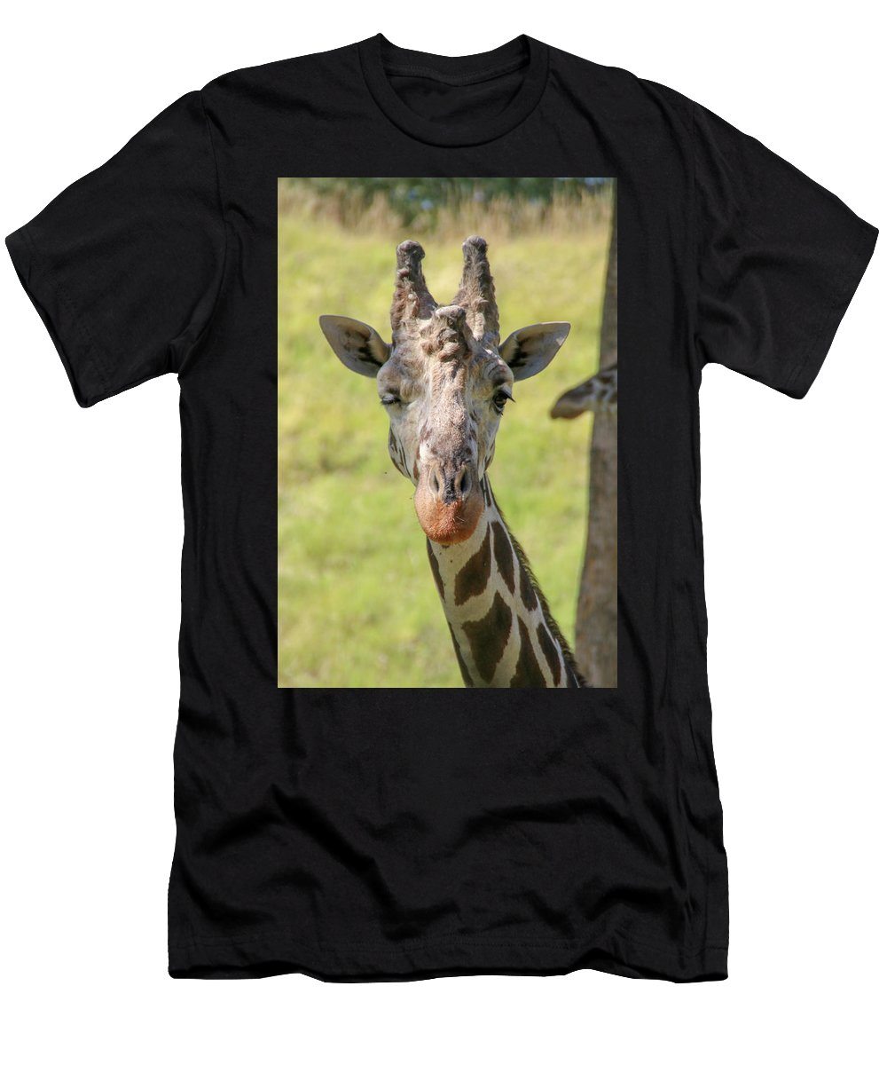 Wink Men's T-Shirt (Athletic Fit) featuring the photograph A Wink by Debra Farrey