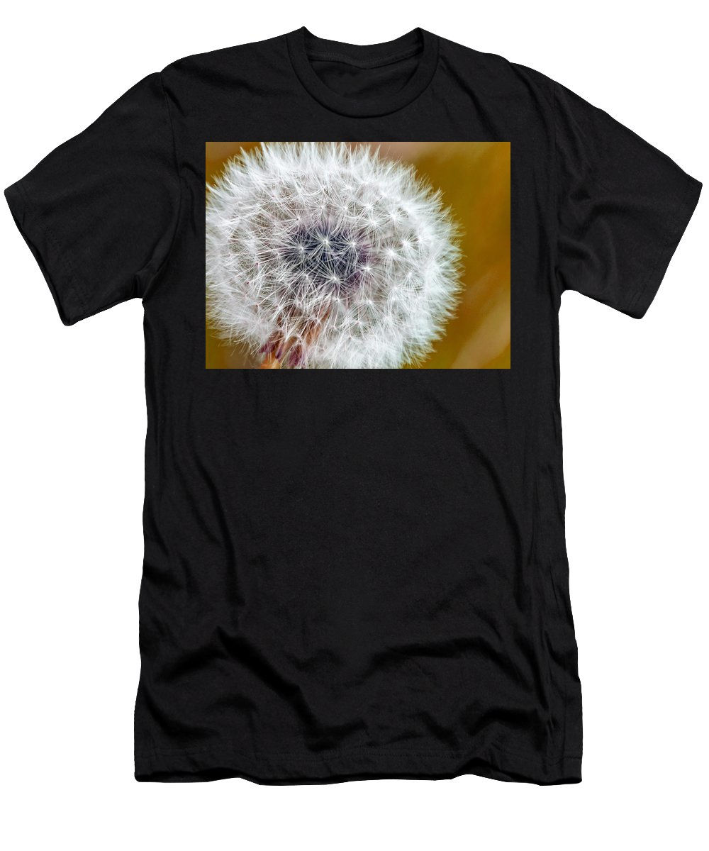 Dandy Lion Men's T-Shirt (Athletic Fit) featuring the photograph Abstract Dandy Lion On - Orange by Rohane Hamilton