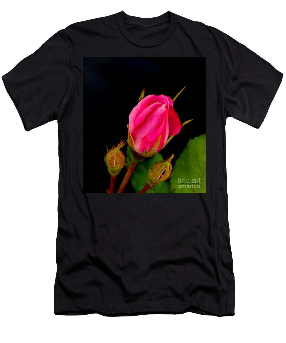 Rose Men's T-Shirt (Athletic Fit) featuring the photograph Admirers by Shelley Jones