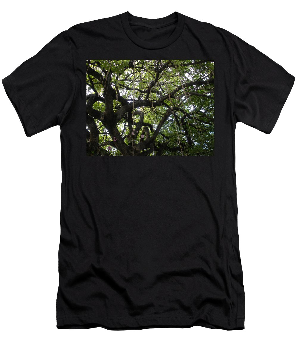 Trees Men's T-Shirt (Athletic Fit) featuring the photograph Aerial Network II by Maria Bonnier-Perez
