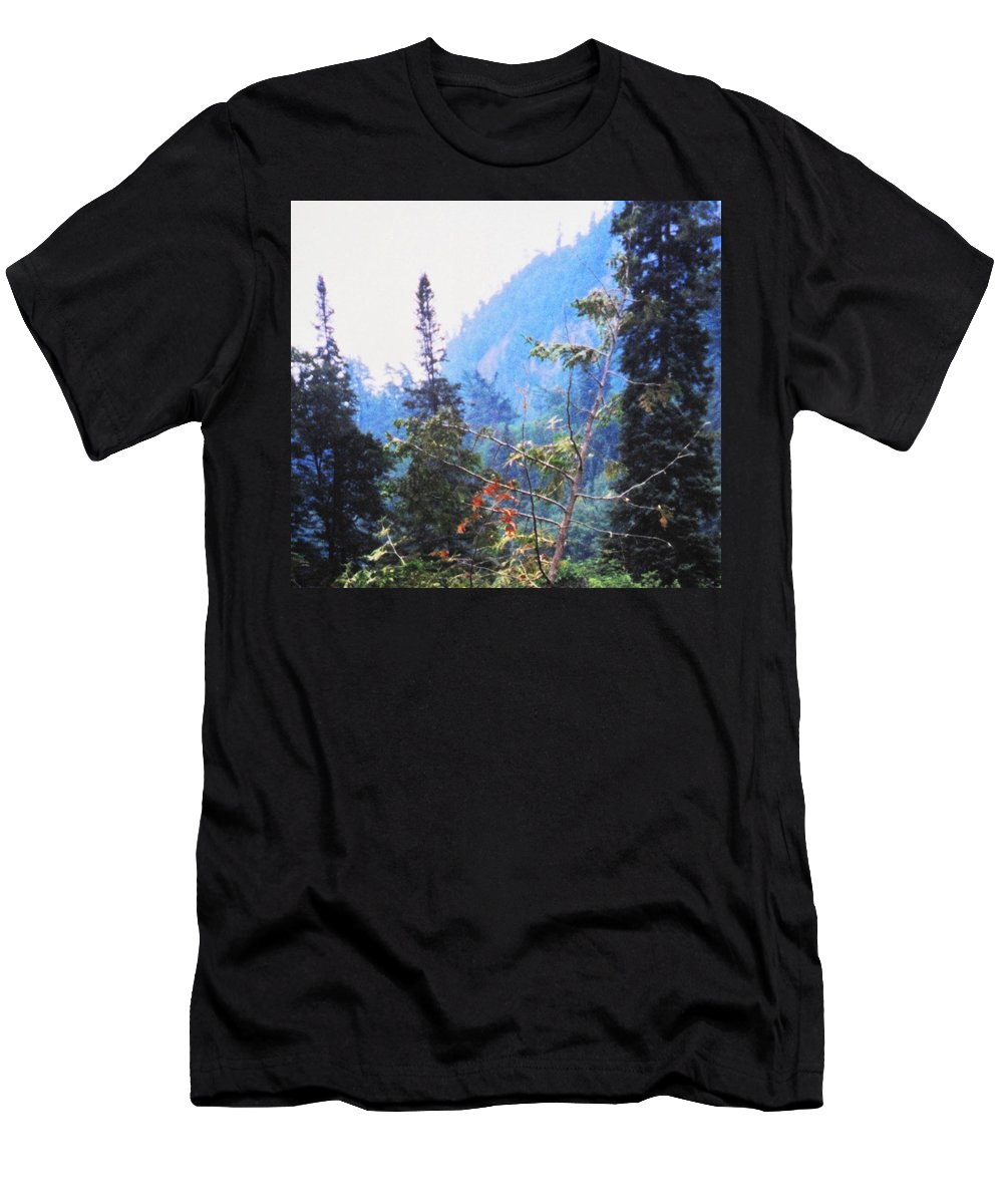 Agawa Men's T-Shirt (Athletic Fit) featuring the photograph Agawa Canyon by Ian MacDonald