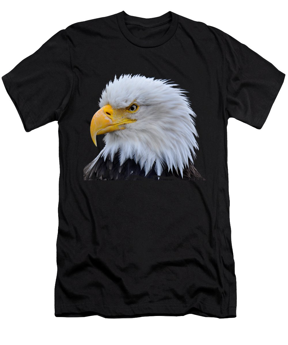 Alaska Photographs T-Shirts