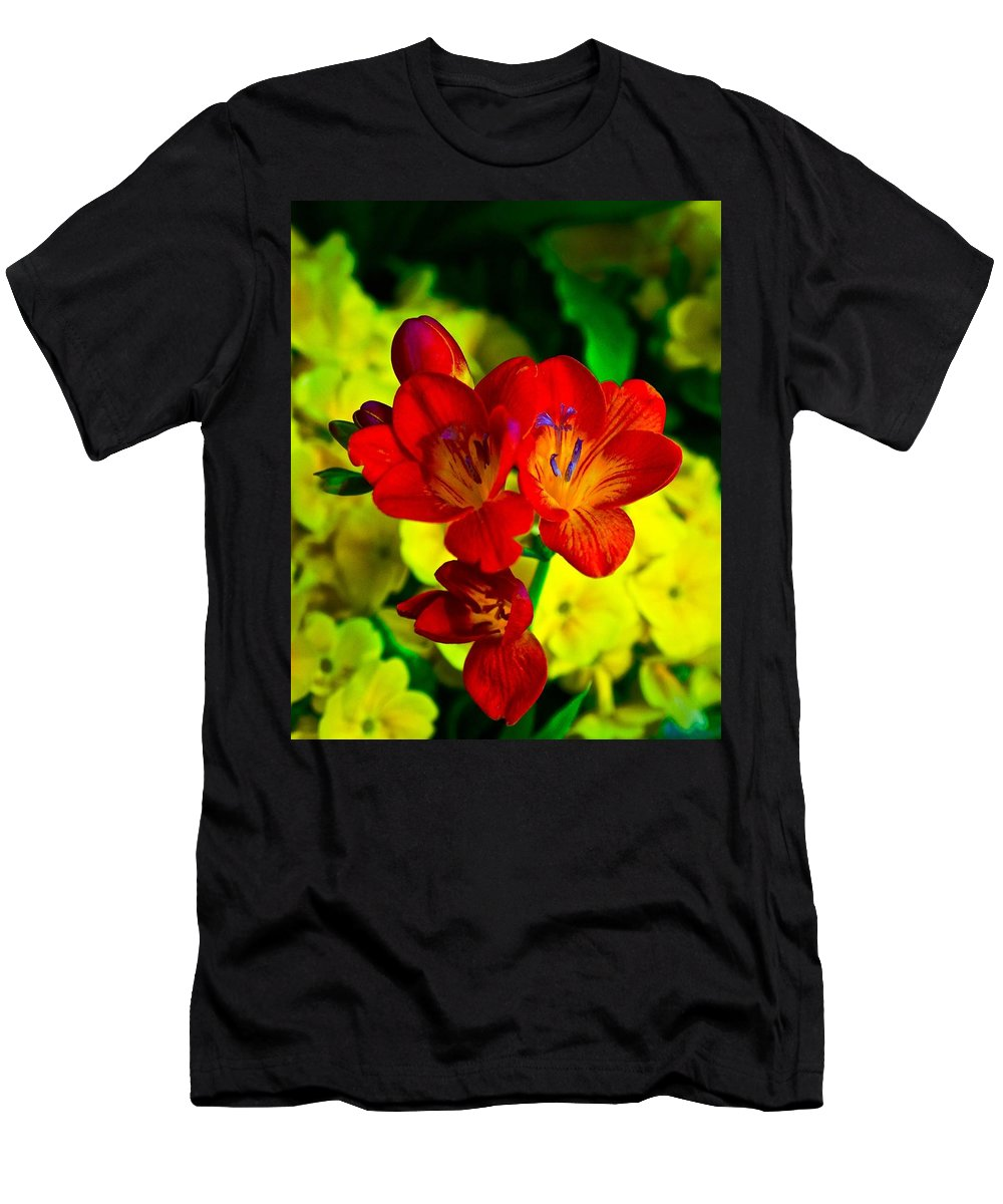 Chicago Botanic Garden Men's T-Shirt (Athletic Fit) featuring the photograph All Bits Of The Rainbow by Tim G Ross