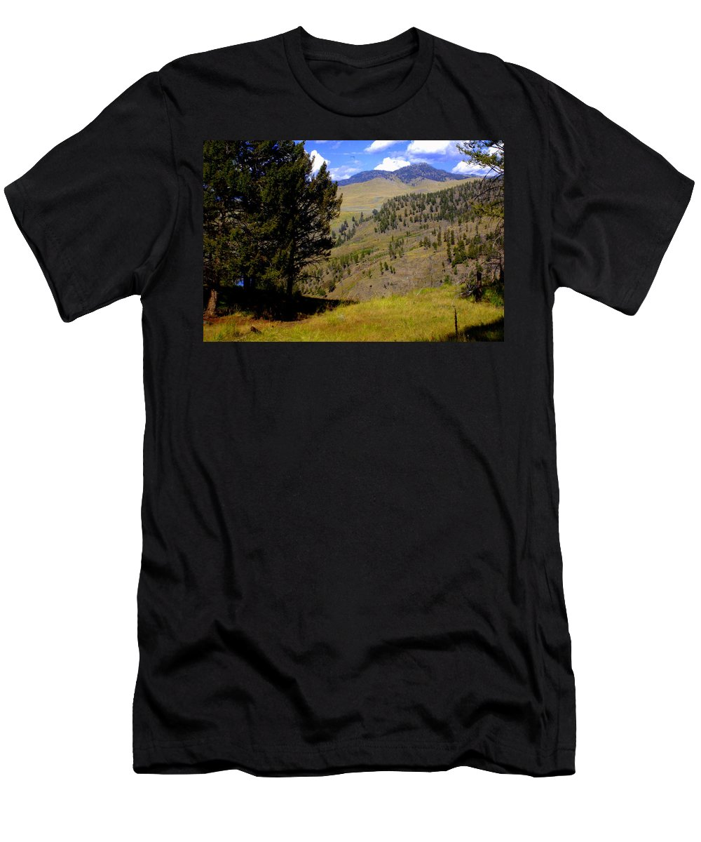 Yellowstone National Park Men's T-Shirt (Athletic Fit) featuring the photograph Along The Hell Roaring Creek Trail by Marty Koch