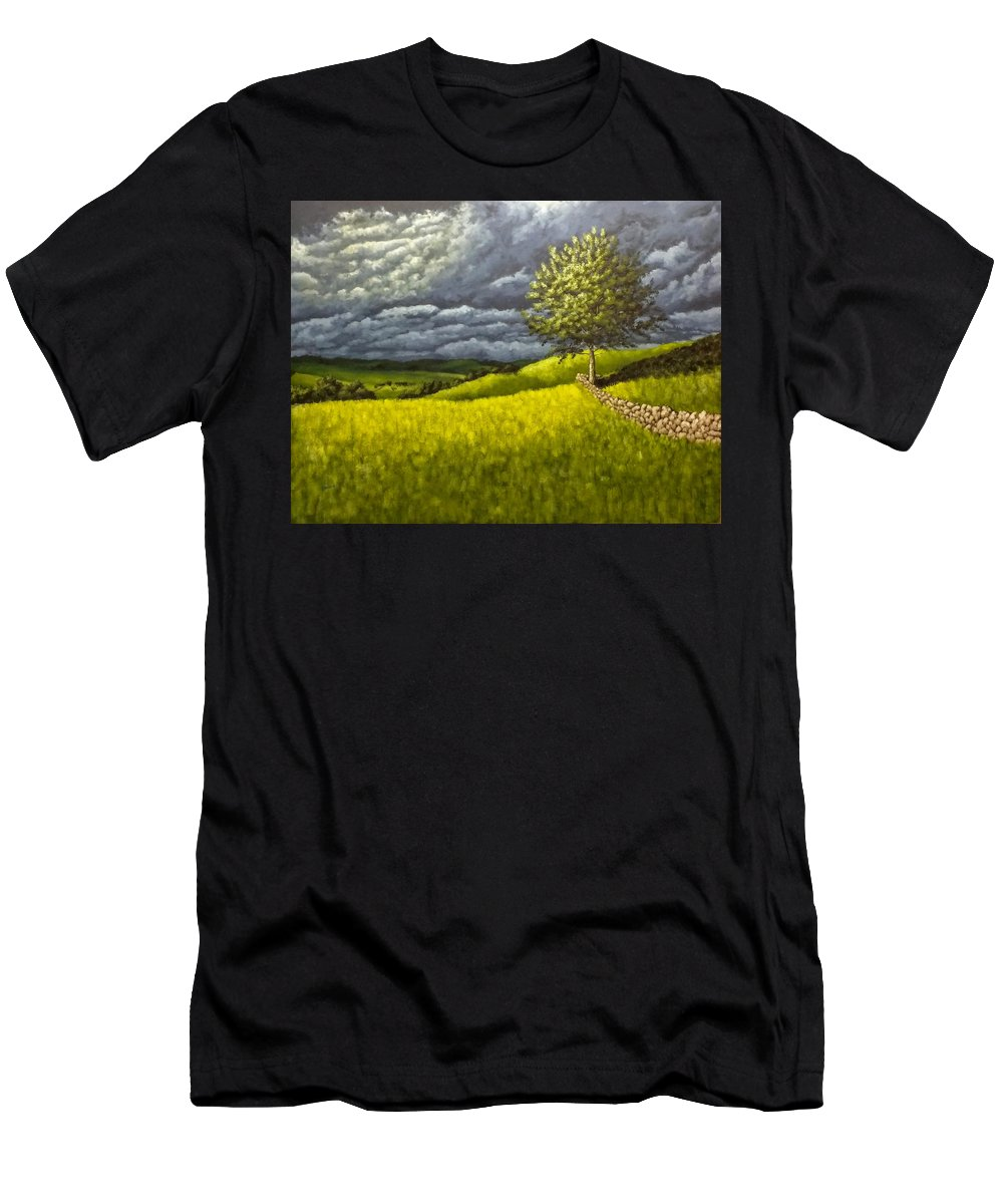 Landscapes Men's T-Shirt (Athletic Fit) featuring the painting Along The Stone Wall by Dan Wheeler