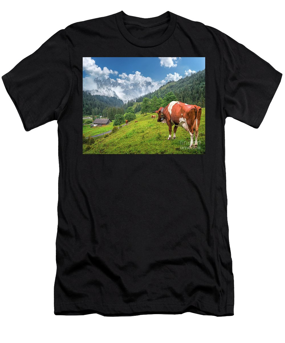Agriculture Men's T-Shirt (Athletic Fit) featuring the photograph Alpine Travel Stories by JR Photography