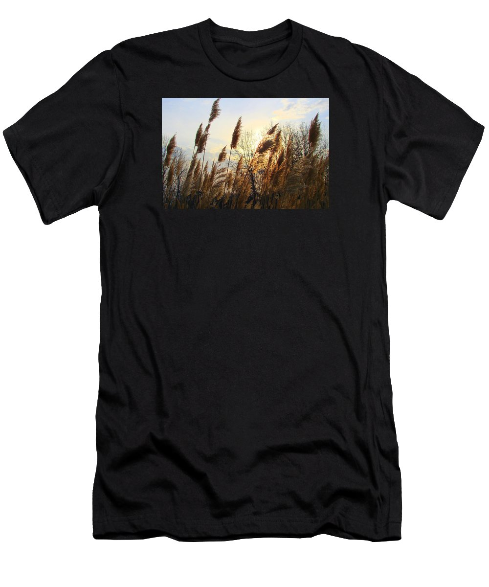Pampasgrass Men's T-Shirt (Athletic Fit) featuring the photograph Amber Waves Of Pampas Grass by J R Seymour