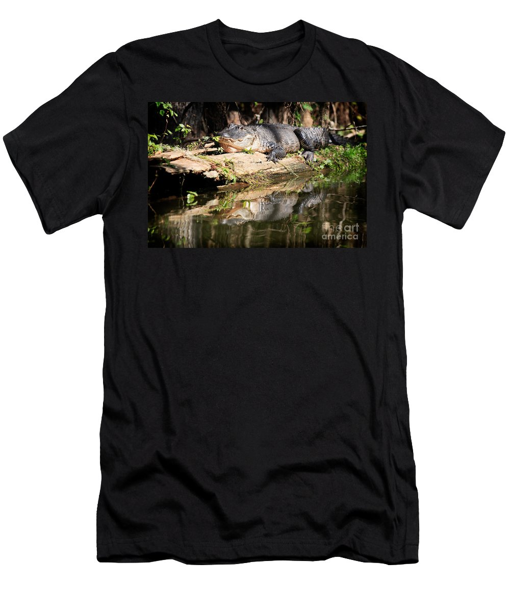 American Alligator Men's T-Shirt (Athletic Fit) featuring the photograph American Alligator With Caterpillar by Matt Suess