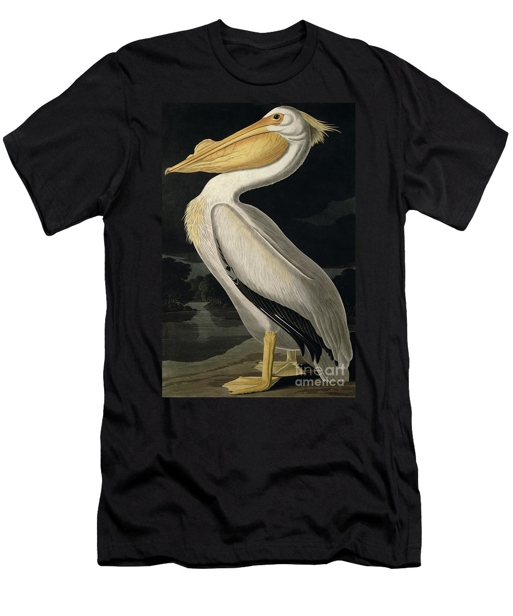American White Pelican T-Shirt featuring the painting American White Pelican by John James Audubon