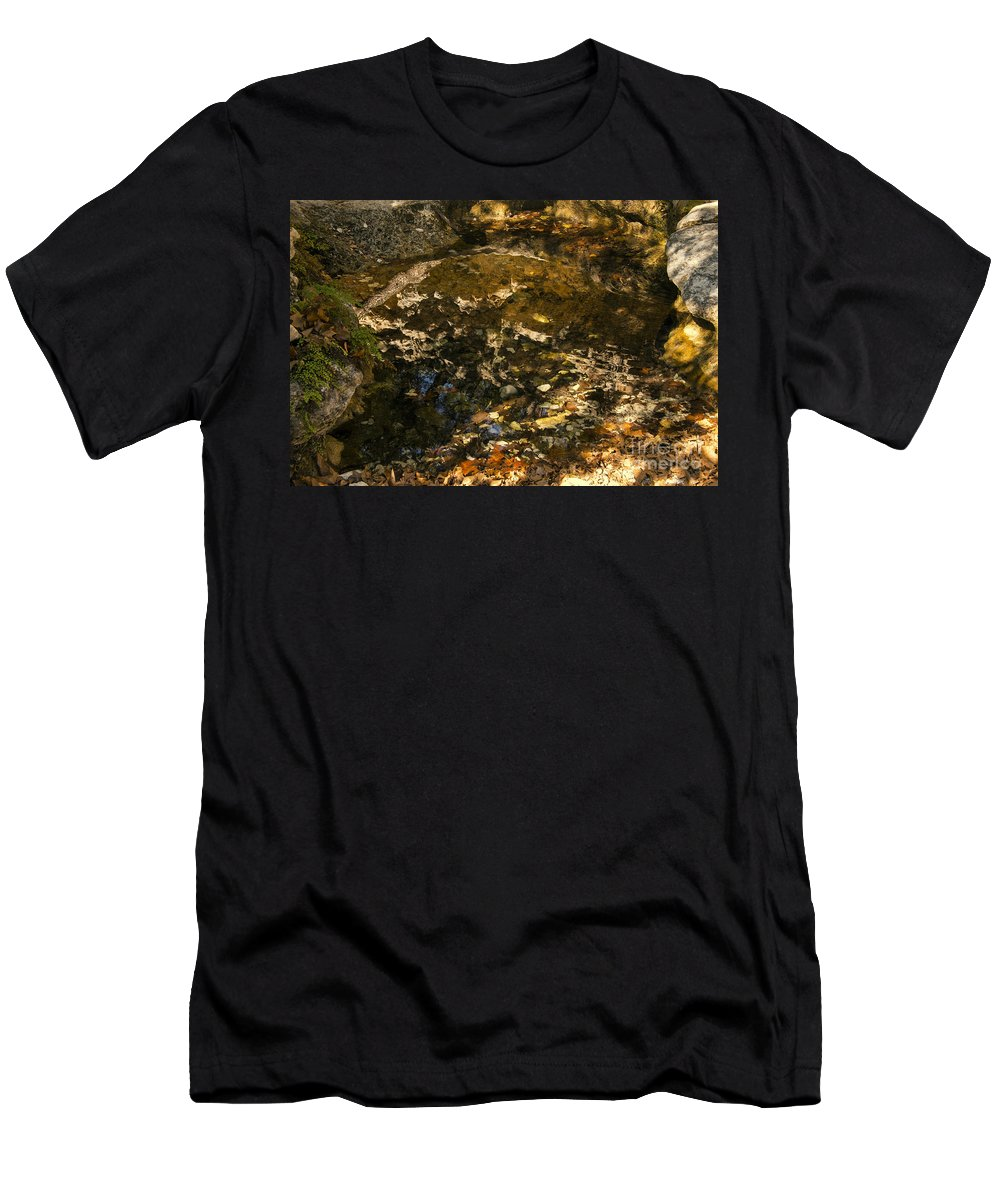 Lost Maples State Natural Area Men's T-Shirt (Athletic Fit) featuring the photograph An Abstract Fall Reflection by Bob Phillips