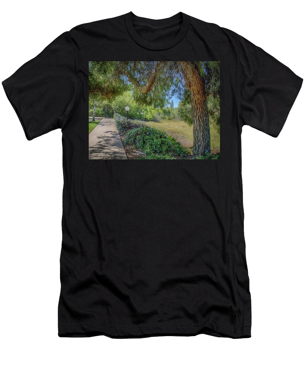 Pine Men's T-Shirt (Athletic Fit) featuring the photograph An Afternoon Stroll by Mary Chris Hines