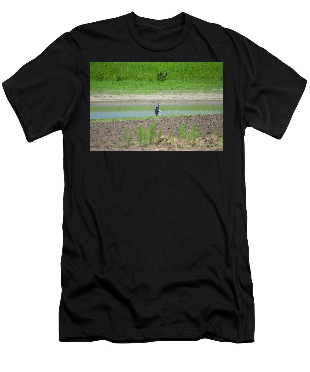 Southern Illinois Men's T-Shirt (Athletic Fit) featuring the photograph An Odd Couple by John Diebolt